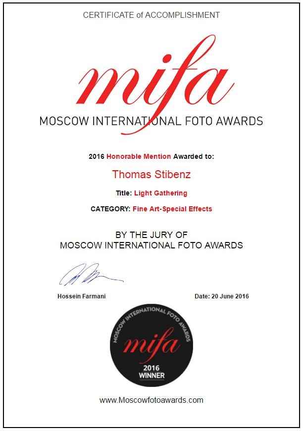Mifa Award Thomas Stibenz Berlin Honorable Mentions Fine Art Special Effects Urkunde 2016
